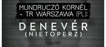 nietoperz_b1_nezokep05