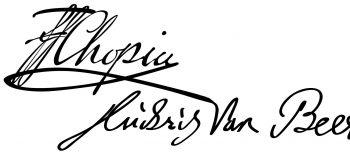2020-10-15 MUSIK XXX. Leipziger Chopin-Tage – Logografik