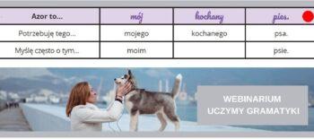 Webinarium-uczymy-gramatyki