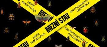 mezni_stav