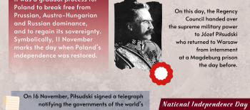 11.11 EN infografika – slajd 2